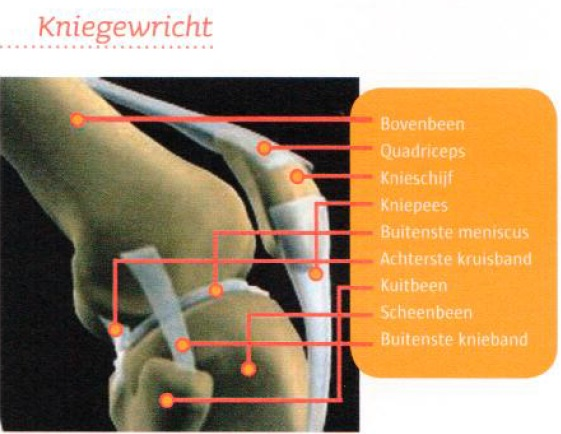 zenuwpijn been behandeling